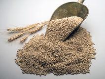 wheat-scoop-grain-white-40244948